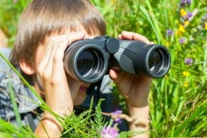 camping activities for kids birdwatching
