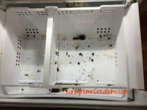 Empty Freezer Door Basket