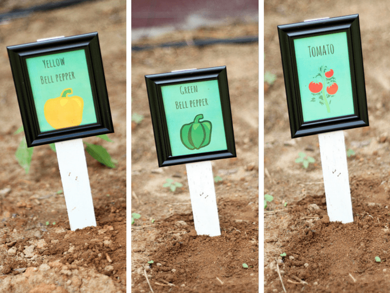 Picture Frame Plant Marker