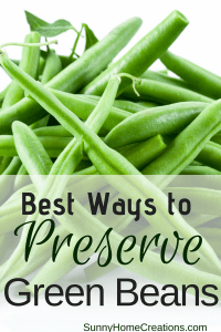best ways to preserve green beans